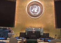 Российский дипломат назвал «ярмаркой лицемерия» поведение западных членов СБ ООН