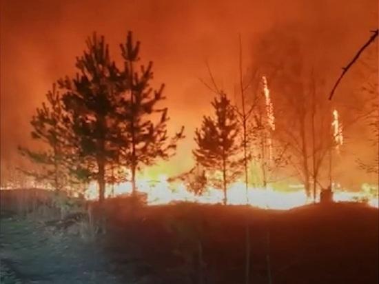 Около Нижне-Сысертского водохранилища разгорелся лесной пожар