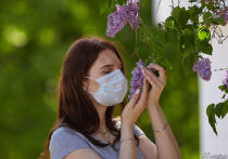 Количество умерших пациентов с коронавирусом в Кузбассе достигло 677 человек