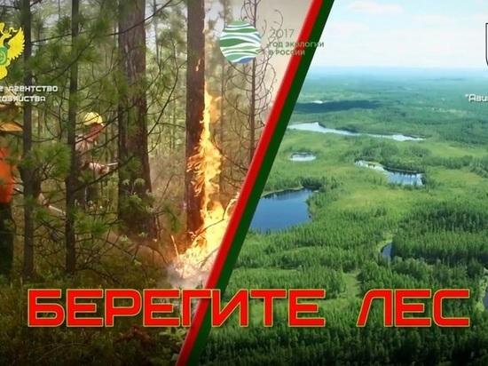 На 5 мая ликвидированы 15 лесных пожаров в Свердловской области
