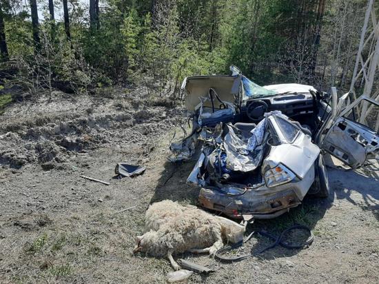 """В Курганской области грузовик """"Урал"""" наехал на Daewoo Nexia: погиб ребенок, трое госпитализированы"""