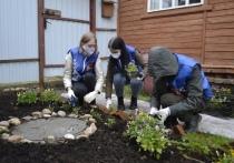 Ивановские добровольцы высаживают