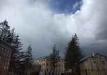 В Тульской области объявили метеопредупреждение из-за порывистого ветра