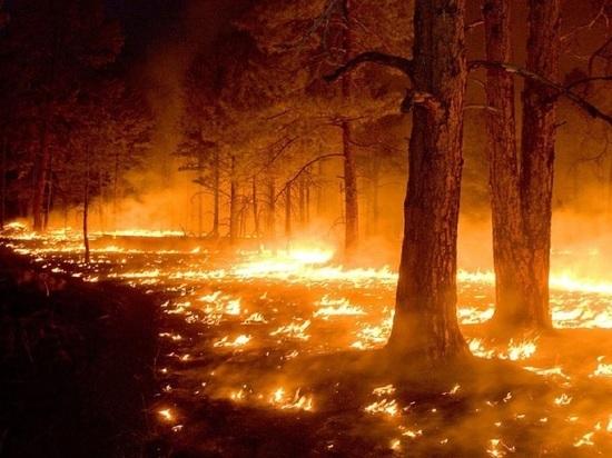 В Асбестовском городском округе ввели режим повышенной готовности в связи с пожаром
