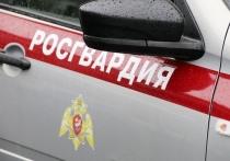 27-летний пскович ночью попытался похитить алкоголь