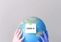 В Псковской области уменьшилось число очагов коронавируса