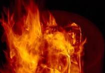Жилой дом сгорел под Себежем из-за неверной эксплуатации печи