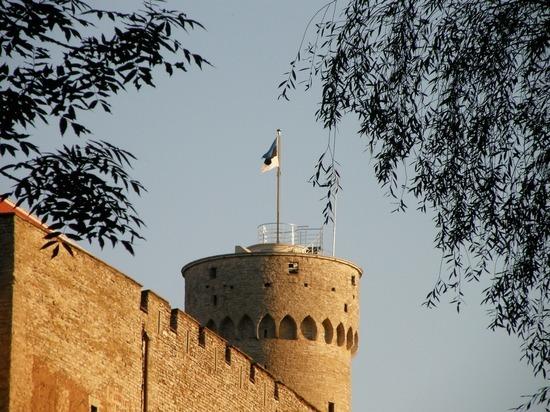 Эстония обвинила Россию в нарушении воздушных границ страны