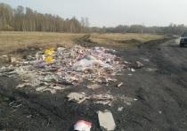 Кемеровчане пожаловались на свалку вдоль дороги в Кедровке