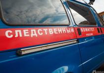 В Кузбассе задержали шизофреника, из-за которого погиб пассажир трамвая