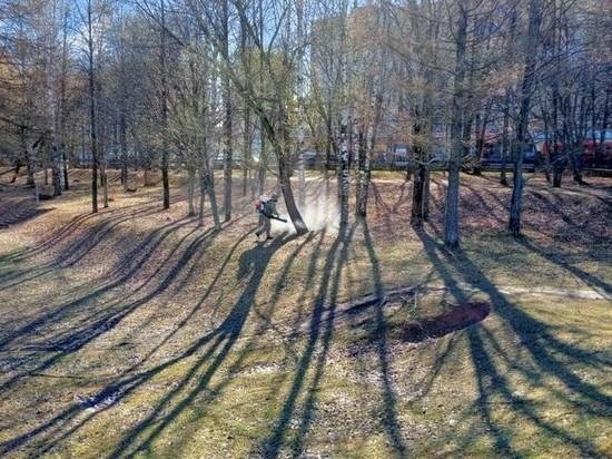 Парки в Кирове обрабатывают от клещей
