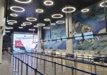 В кемеровском аэропорту рассказали, какие знаменитости приедут на открытие нового терминала