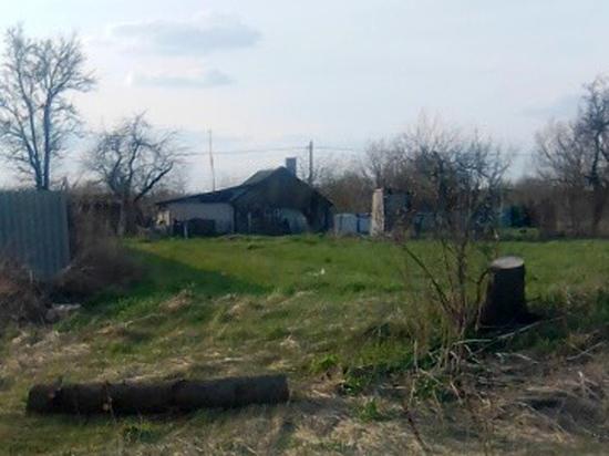 Внуки ветерана рассказали подробности: украсили елью территорию администрации