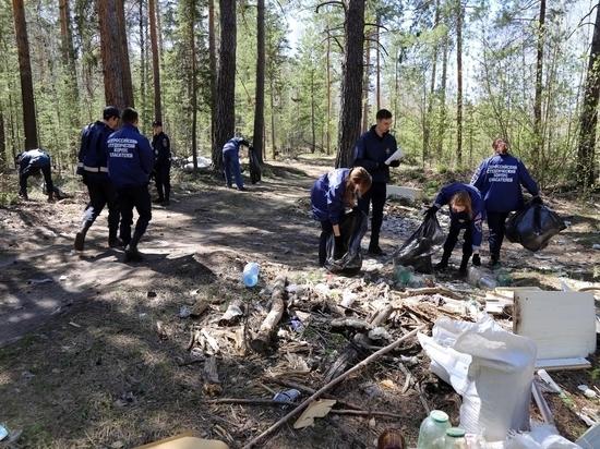 В Кургане очистили от мусора 7 гектаров леса