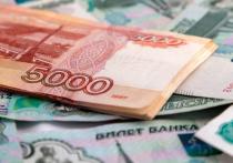 Оригинальную реформу алиментов предложили эксперты Российской общественной инициативы