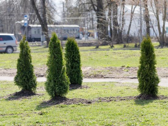 До 12 градусов тепла прогреется воздух 8 мая в Псковской области