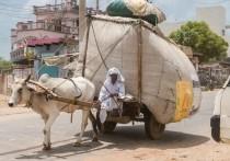 ООН: бедные страны получили только 0,3% вакцин от коронавируса