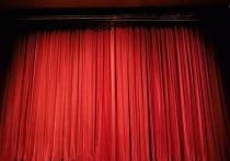 Отборочный тур среди подростков, которые желают стать актерами, пройдет 15 и 16 мая в красноярском ТЮЗе