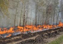 В Тюменской области особый противопожарный режим продлен до конца месяца