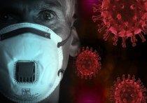 По данным оперативного штаба на 8 мая, за минувшие сутки от коронавируса умерли 10 жителей Красноярского края