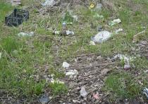 Один сплошной мусор: псковичка просит убрать территорию возле городского виадука