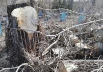 В Кузбассе жители поселка Темиртау возмущены вандализмом на кладбище