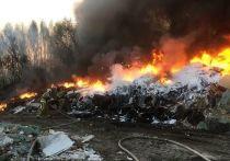 На окраине Омска в районе ТЭЦ № 5 почти выгорела нелегальная свалка