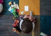 В магазинах Петропавловска-Камчатского воруют игрушки и одежду