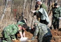 Следователи из Иванова нашли останки красноармейцев-земляков в тверской области