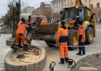 По улице Ленина в Чите спилили 21 тополь, чтобы высадить рябину