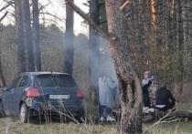 Бдительные очевидцы сняли нарушителей на камеру и выложил фото в сеть
