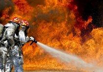 Автор поста сообщил, что к моменту съемки пожара площадь выгорания составила около 200 квадратных метров