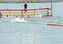 70 моржей в Красноярске проплыли милю по Енисею в воде температурой +2,5 °C