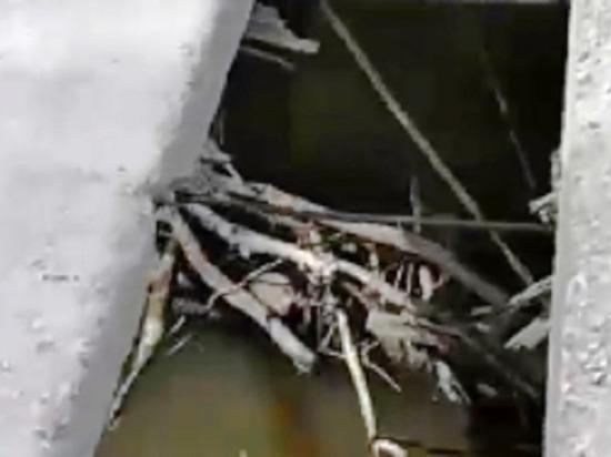 Калужане ежедневно, рискуя жизнью, проезжают по аварийному мосту