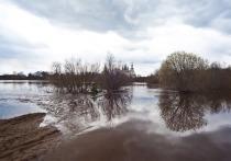 На реке Обь продолжается подъем уровня воды в районе города Колпашево