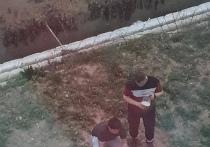 В Новосибирске двое мужчин пожарили шашлыки рядом с домом