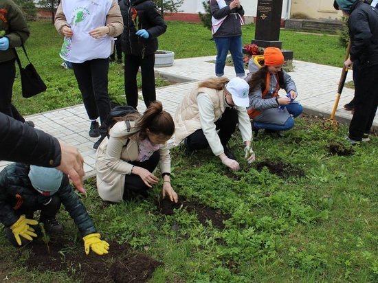 """2 тысячи деревьев высадили в Псковской области по проекту """"Зеленая область"""""""