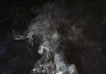 Вечером в  понедельник, 10 мая, в Томске жители стали жаловаться на дымку и запах гари