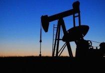 Россия обеспечена нефтью при нынешнем уровне добычи по меньшей мере на 59 лет, природным газом - на 103 года