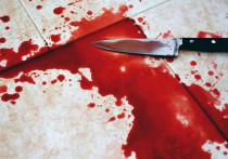 В Якутии женщина чуть не убила собственного сына