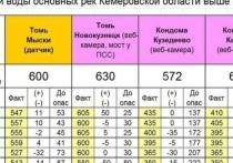 Уровень Томи в Новокузнецке вновь приблизился к критической отметке