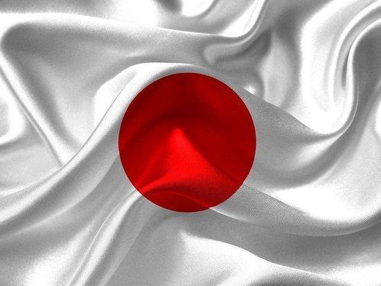 В Японии одобрен законопроект об общенациональном референдуме