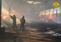 За майские выходные в Калужской области в ДТП и пожарах погибли 7 человек