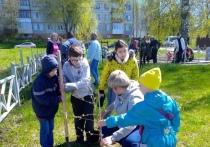 В микрорайоне Кубяка в Калуге высадили Сад памяти