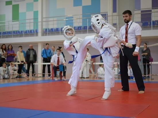 Кубок губернатора по КУДО состоялся в Пскове