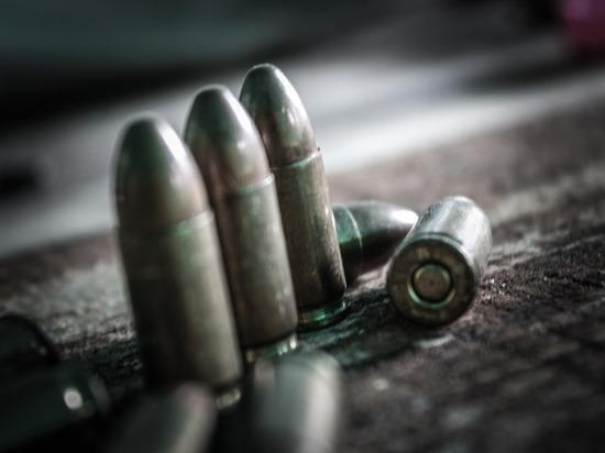 После школьной бойни в Татарстане проверят всех владельцев оружия