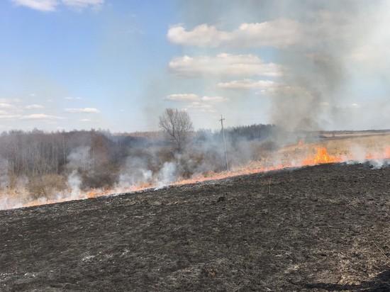 94 раза выезжали смоленские  пожарные из-за горения травы за майские праздники