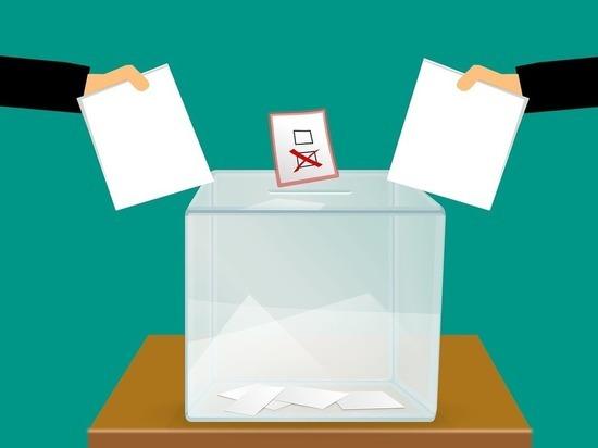 Молдавские гастарбайтеры готовятся к выборам