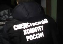 Личность погибшей женщины, обнаруженной в номере придорожной гостиницы в поселке Юдино Одинцовском районе Подмосковья, сейчас пытаются установить следователи