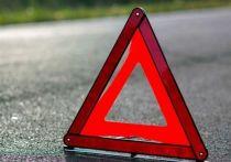 ДТП с участием мопеда произошло в Пушкиногорском районе